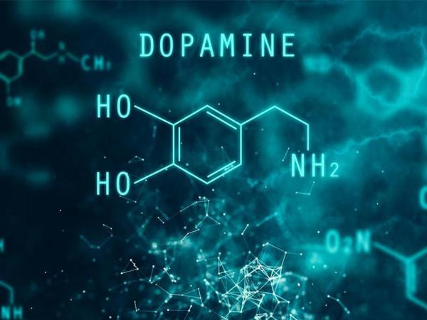 Дофамин - источник зависимостей - Реабилитационный центр Время жить! - Реабилитация алко и наркозависимых